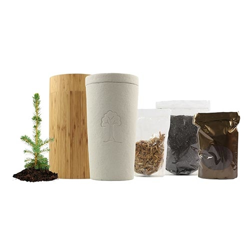 Eternity Kit with Tree/Plant for Humans - Full Circle