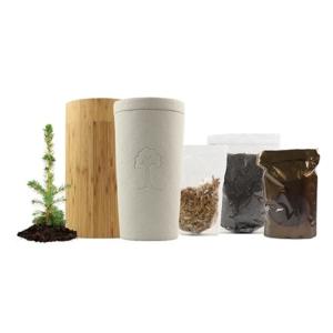 Your Eternity Tree Kit